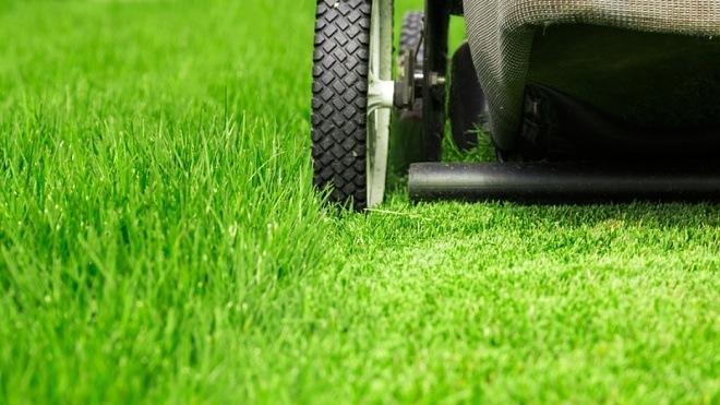 jak pečovat o trávník