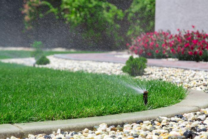 jak zalévat trávník